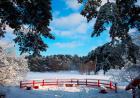 俄罗斯冬天的第一场场雪 下了一年