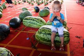 瓜果节经济渐热 有着什么样的商业价值