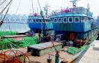 禁渔期偷捕鱼子鱼孙36万斤 10名嫌犯被抓