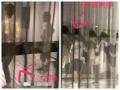 男帅女美刘亦菲杨洋练舞被拍 舞姿帅气对镜尬舞
