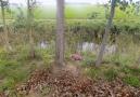 锦州一水沟边的粉红色书包里传来哭声 里面竟是男婴
