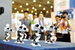 第十五届中国国际软件合作洽谈会在成都启幕