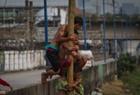 印尼人爬树庆国庆日