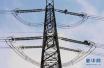 乡村振兴新实践:山东3亿元升级646个贫困村电网