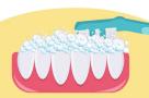 你真的会刷牙吗