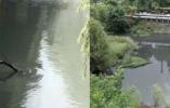 33张罚单难阻企业违法排污 中央环保督察组分析原因