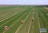 严守耕地保护红线!山东推进耕地保护责任目标考核