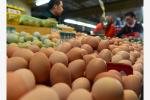 """近期鸡蛋价格为何快速上涨? 系有大资金在""""炒"""""""