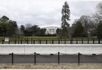 白宫:特朗普将提名沙纳汉出任国防部长