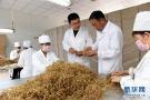 河北南和:党建引领助力乡村振兴