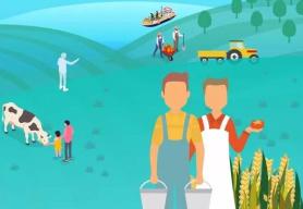【图解】饭碗如何越端越牢?一组数据见证农业70年改变…